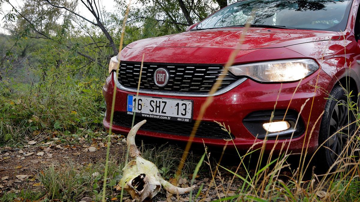 Fiat Egea resimleri
